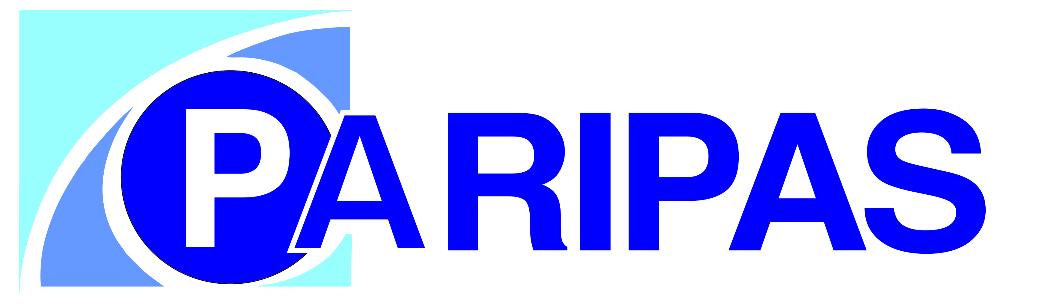 paripas logo